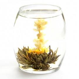 Coffret dégustation de 6 fleurs de thé