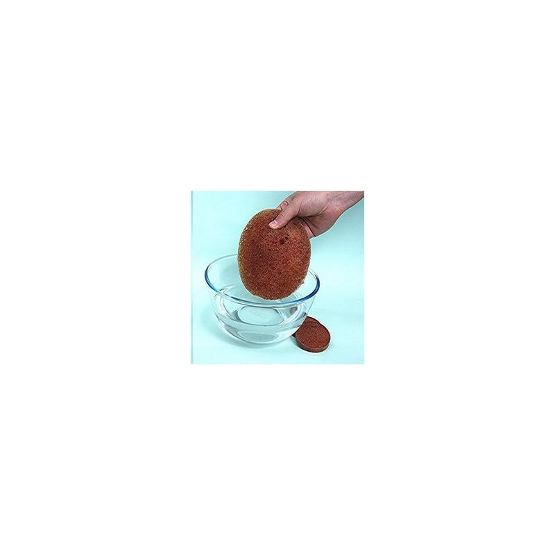 Distributeur D Eau Pour Plante : galet distributeur d 39 eau r utilisable pour suspension et plante d 39 int rieur ~ Dode.kayakingforconservation.com Idées de Décoration