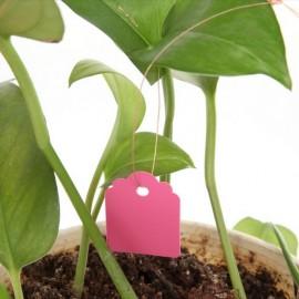 20 étiquettes plastique rose à suspendre - 3,6x2,5cm