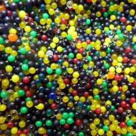 Haricot Magique et son terreau multicolore