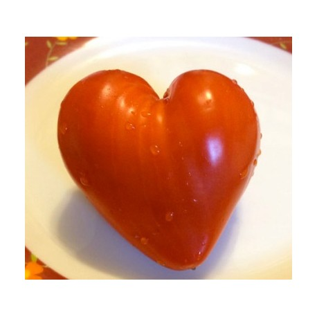Tomate coeur - Moule en plastique (Moulage de fruits et légumes)