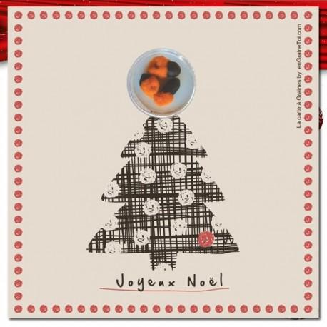 Sapin de Noel - Carte à graines