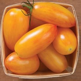 Tomate ARTISAN™ Blush Tiger