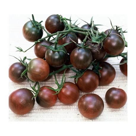 graines tomate cerise 39 black cherry 39. Black Bedroom Furniture Sets. Home Design Ideas