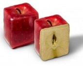 Moulage de fruit - Pomme carré