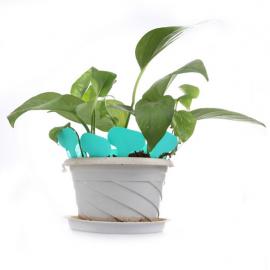 12 étiquettes plastique BLEU TURQUOISE pour semis, bouture, potée - 4,5x2,5cm