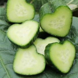 Concombre coeur - Moule en plastique (Moulage de fruits et légumes)