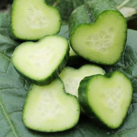 Moule coeur pour concombre (Moulage de fruits et légumes)