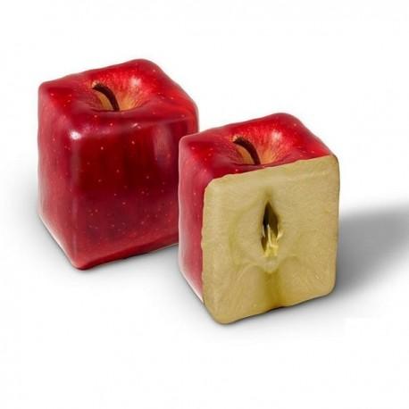 Pomme carrée - Moule en plastique (Moulage de fruits et légumes)