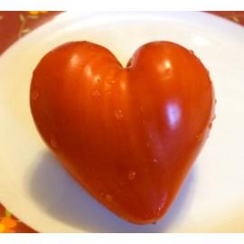 Tomate cocktail coeur - Moule en plastique (Moulage de fruits et légumes)