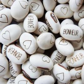 Graines Haricot Magique 'MARIAGE' pour faire passer votre message