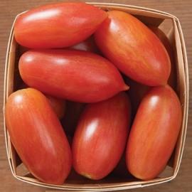Tomate ARTISAN™ Pink Tiger