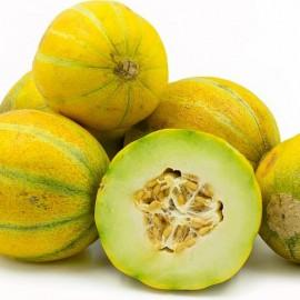 Melon Ogen ( Melon Haogen)