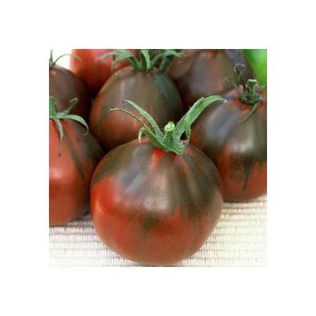 Graines Tomate ancienne 'Poire noire'