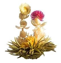 Fleur de thé avec amaranthe - enGraineToi.com
